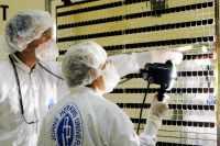 Solární panely - 902x600x16M (80 kB)